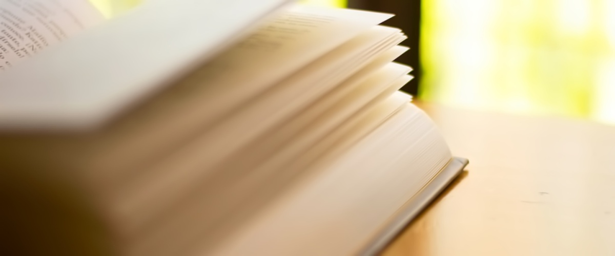Essay outline help best friends